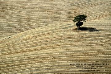 Toscana Crete Senese