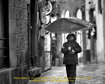 Volterra 2014 2-01-2014 209