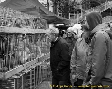 Vogelmarkt 20140405 098