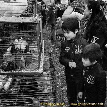 Vogelmarkt 20140928 004