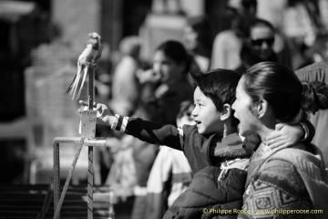 Vogelmarkt 20160410-20.jpg