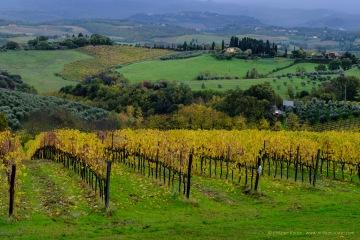 italia-2016-11-0226