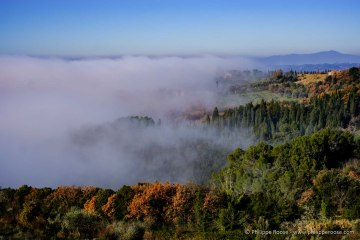 italia-2016-11-2309-2
